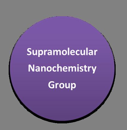 Supramolecular Nanochemistry Group